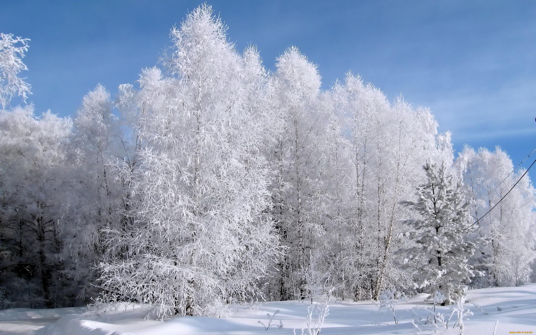Картинки время года зима